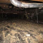 Damp Dirty Musty Smelly Crawl Space Before
